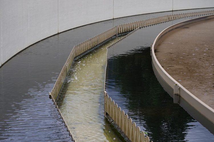 Metodo e dispositivo per il controllo del processo biologico in impianti di depurazione