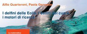 I delfini delle Eolie, i battiti del cuori, i motori di ricerca